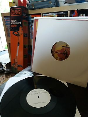 richard ashcroft a song for the lovers promo record