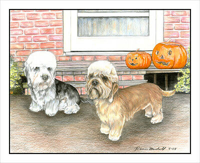 "Dandie Dinmont Terrier ""Pumpkin Heads"". Original MATTED 16x20 Art Print."