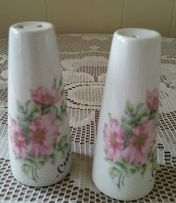Salt and Pepper Shakers Souvenir Central Tilba NSW Australia