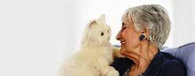 Joy For All -White Robotic Companion Cat for People with Alzheimer's