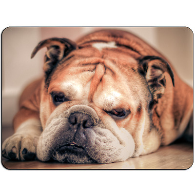 Mousepad EasyGrip Non Slip Mouse Pad Bulldog Rest Y00634