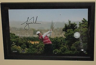 UDA LE 250 TIGER WOODS SIGNED (10th Tee Breaking Through) FRAMED GOLF AUTO NICE