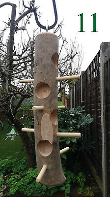 Hand made hanging log fat suet seed bird feeder hardwood perches feeding station