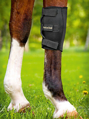 Black Back On Track Pain Relief Knee Boot For Horses