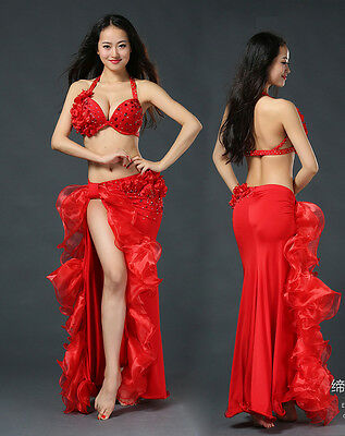 New Red 2017 Professional Belly Dance Costumes Performance 2pcs Bra Skirt