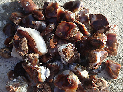 Rough Windowed mexican fire agate grab bag lot of 5