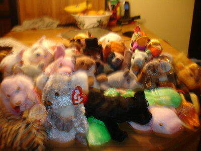 Ty  Retired Beanie Babies  Animals  Your Choice
