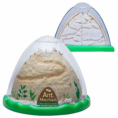 Insect Lore Ant Farm - Two Sided Ant Mountain- Includes Habitat, Sand And for