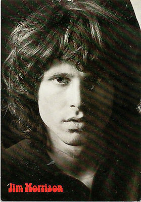 """Jim Morrison"" of the Doors-(Publicity Postcard-World Collection 183)"