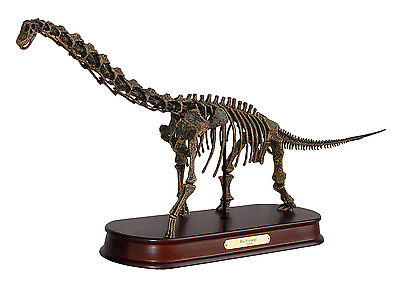 Brachiosaurus Dinosaur Skeleton Model Replica 1:35 Scale DinoStoreus