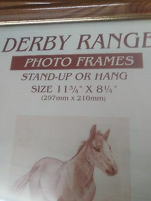 Derby Range Photo Frame  Stand Up or Hang 297mm x 210mm