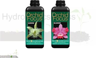 Orchid Focus Grow or Bloom Nutrient Hydro Hydroponics House Plant