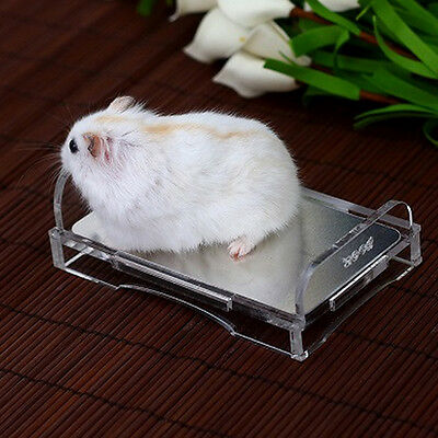 Small Animal Pet Hamster Mouse Summer Cooling Mat Bed Squirrel Breathable Bed