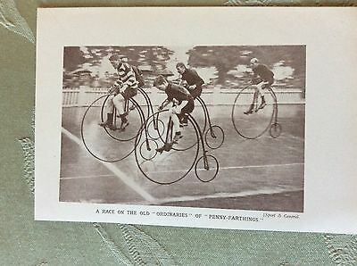 m17a7 book picture ephemera 1930s brooklands race of old penny farthings
