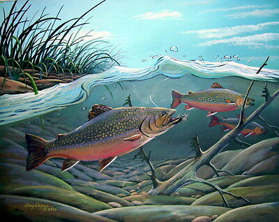 Brown Trout Print 11 x 14 by artist Doug Walpus Fly Fishing Acrylic Signed