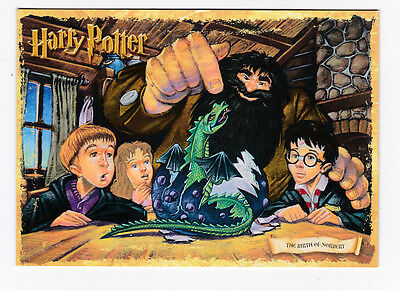 HARRY POTTER  carte postale n° PC0411 EDITEE EN 2001 THE BIRTH OF NORBERT