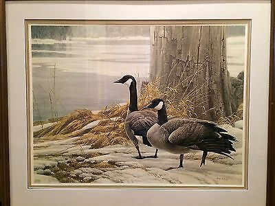 """Rare! Limited Edition Print: """"Canada Geese in Winter"""" by Robert Bateman 206/400"""