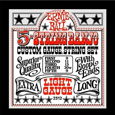 Ernie Ball Banjo 5 cordes light 2312 (Y2F)