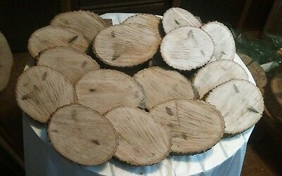 20 Pc Unique Shaped Hardwood Log Slices Wood Disk Rustic Wedding Centerpiece
