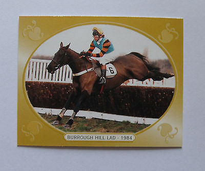 G D S Horse Racing Collectors Card Cheltenham Gold Cup Winner Burrough Hill Lad
