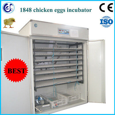 RD-1848 chicken/duck/goose egg incubator for selling
