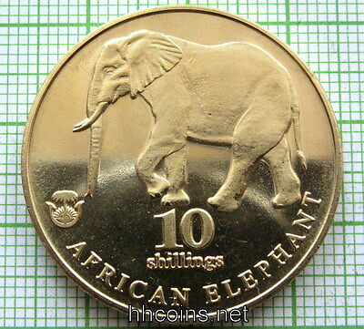 Biafra 2017 10 Shillings, African Elephant, Fantasy Coin