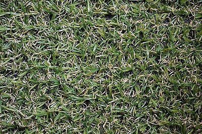 Artificial Grass Astro Garden 5.5m x 4m Remnant **COLLECTION ONLY**