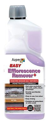 Efflorescence Remover 1 Litre Concentrate Professional Grade Removes Salt Stains