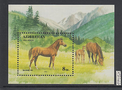 XG-AI771 AZERBAIJAN - Horses, 1993 Nature, Wild Animals, Mountains MNH Sheet