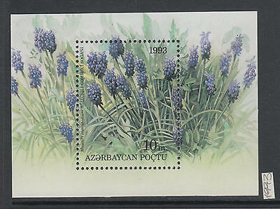 XG-AI773 AZERBAIJAN - Flowers, 1993 Flora, Nature MNH Sheet