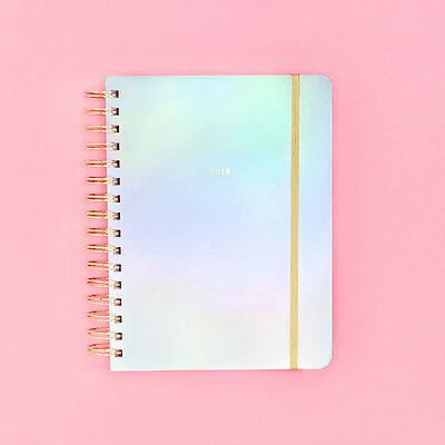 Ban.do - 2017-2018 Agenda / Planner - Bando - Holographic - Medium Agenda