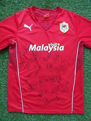 Cardiff City Shirt Hand Signed by 2016/2017 Squad - 17 Autographs - Zohore Noone