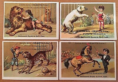 c1890 CIRCUS THEMED CHROMOLITHOGRAPH TRADE CARDS Lion Tamer POLAR BEAR STARCH Co