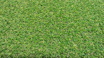 *SALE* Artificial GRASS remnant *Looks realistic* 6m x 4m *FREE DELIVERY*