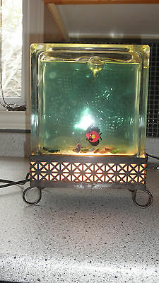 Rare Vintage Mid Century Water Filled TV Lamp All Original Oh So Retro