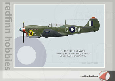 Warhead Illustrated P-40N Kittyhawk 75 Sq RAAF Hep Cat Aircraft Print