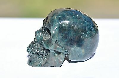 Stunning Natural Blue Kyanite Hand Carved Skull!