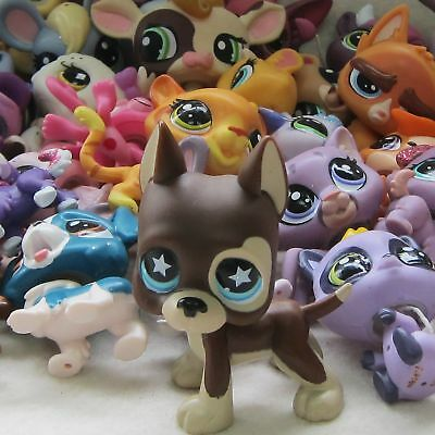 6pc Littlest Pet Shop Animal Collection LPS Loose #817 Star + Cat Dog Toy Random