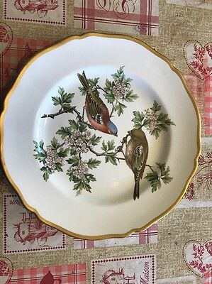 "Spode ""British Bird Series"" By Harold Holdway Chaffinch"