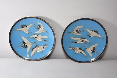 Japanese Pair Of Blue Cloisonne Plates Chargers With 5 Cranes