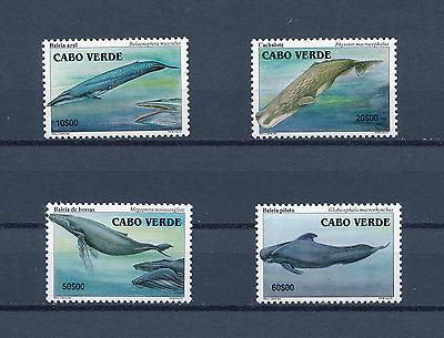 Cabo Verde - 2003 - Whales
