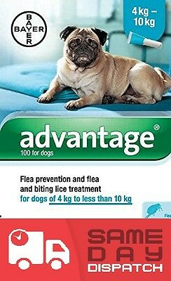 Advantage 100 Spot-On Flea treatment  Solution for Small Dogs 4-10kg....