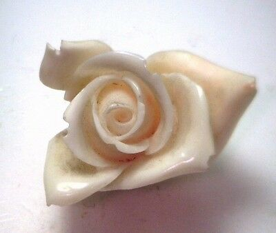 NOS Antique Genuine Undyed Carved Coral Natural HUGE ROSE FLOWER Stone #OK60