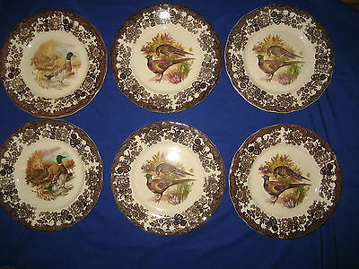 6 x  Royal Worcester  Palissy Game  Series Dinner  Plates 25 cm