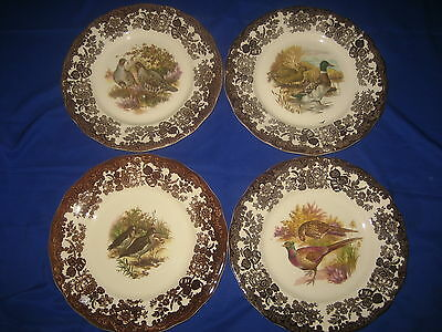 4 x Royal Worcester  Palissy Game  Series Dinner  Plates  25 cm