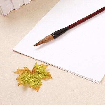 30Pcs Xuan Paper Chinese Raw Rice Paper Painting Calligraphy 49x34cm / 35cmx26cm