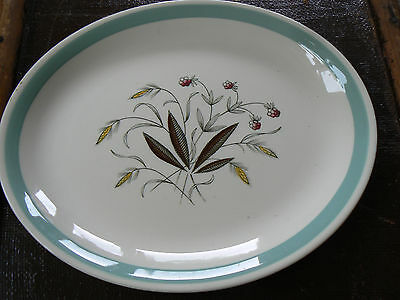 Alfred Meakin-Hedgerow-Serving Plate/ Platter