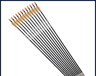 "Orange Feather Fiberglass Arrow 12pcs/lot 31"" Spine 700 Hunting Arrows Archery"