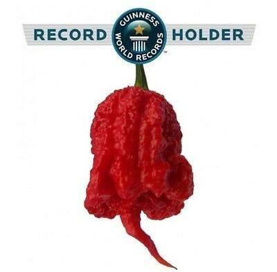 20 semi peperoncino Carolina Reaper + mix 20 semi OMAGGIO