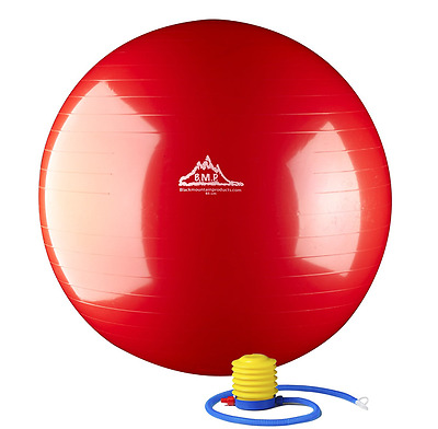 55cm Gym Ball in 3 colours 2000lbs Static Strength Exercise Stability with Pump